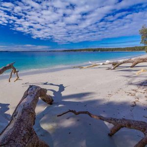 © Dive Jervis Bay
