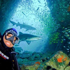 © South West Rocks Dive Centre
