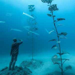 Australia - Queensland - Adreanalin Dive - MOUA - Darren Jew (2)