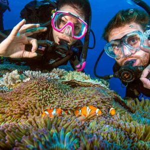 © Pro Dive Cairns
