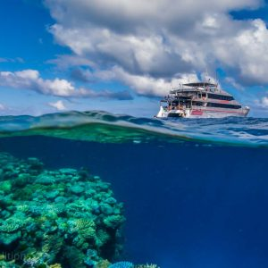 © Mike Ball Dive Expeditions