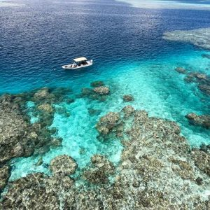 © Pohnpei Surf Club -Mangrove Bay Hotel