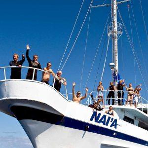 Fiji - Naia- Bow