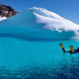 Header - Antarctica - Aurora Expeditions - Snorkeler