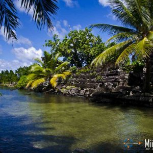 © Pohnpei-Visitors-Bureau-Tim-Rock