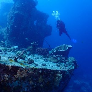 © Rabaul Dive Adventures