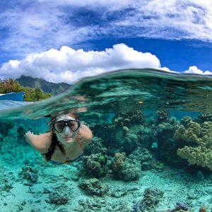 Tahiti - Moorea - Top Dive - -© Frederique Legrand