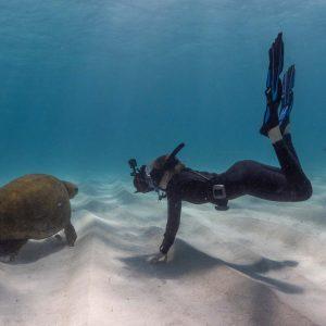 © Aurora Expeditions - Ningaloo Reef - Scott Portelli